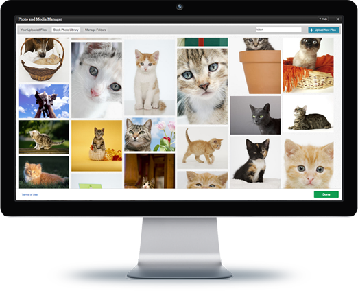 Bravenet Blogs include access to Stock Photos and Fonts